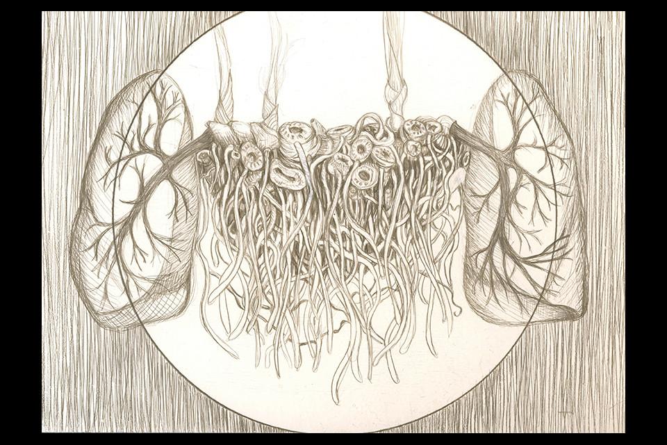 lungs_rhizome-web